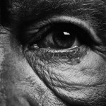 Sandro Miller, Bill Brandt / Eyes (1960-1964) (A), 2014